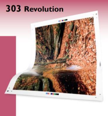 303 REVOLUTION CD